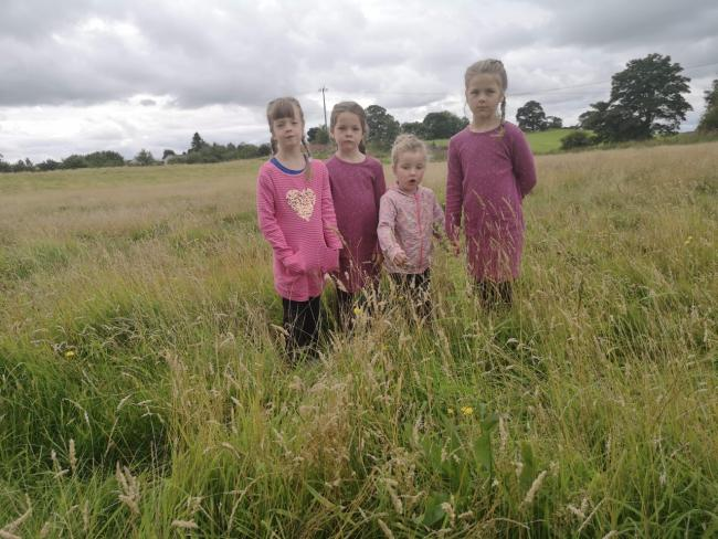 Some Fife residents have already objected to the prospect of green spaces and grassland being 'abandoned' and overgrown