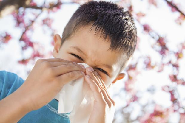 Dunfermline Press: COUGHS AND SNEEZES Children remain infectious with flu for much longer than adults
