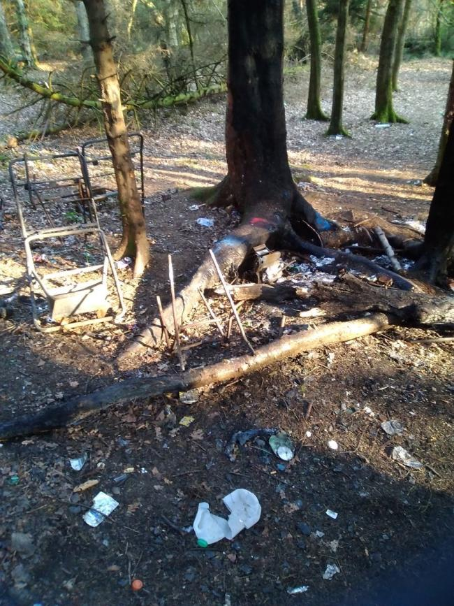 Fires set and bottles smashed in woods